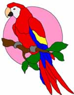 Red Macaw Stained Glass Pattern Thumb
